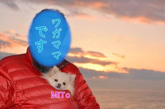 530px20140113_MiTo-0002.jpg