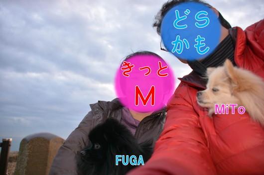 530px20140113_sibling-0001.jpg