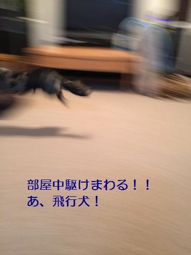 IMG_5728-002.jpg