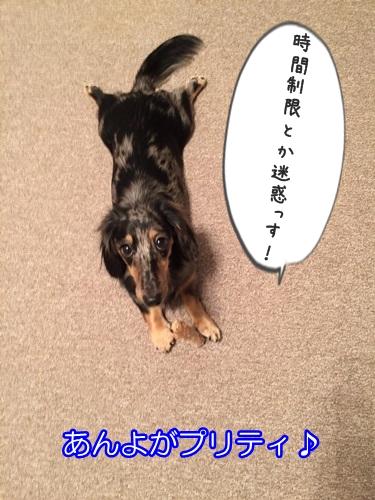 IMG_7858.jpg