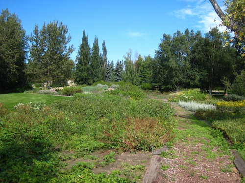 デボニアン植物園