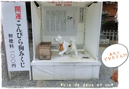 20141011blog19.jpg
