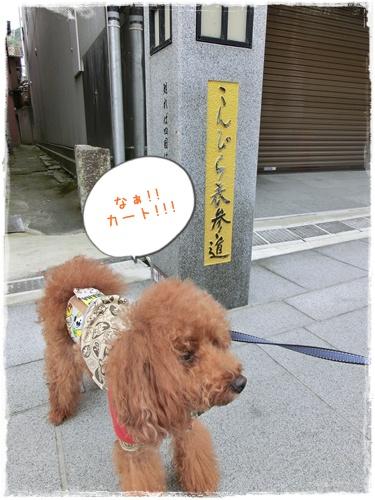 20141011blog4.jpg