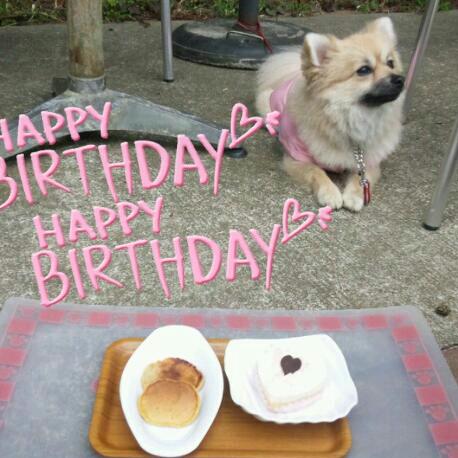 くるみ2歳の誕生日