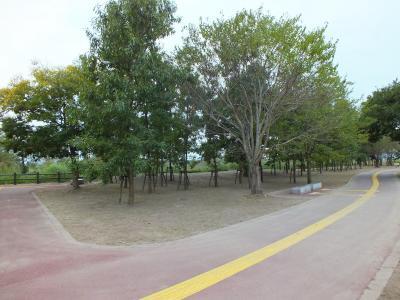 広場あり 木々もあり・・・