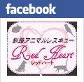 facebook-bana.jpg