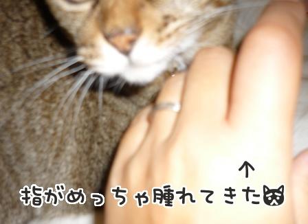 2013-07-25-01.jpg