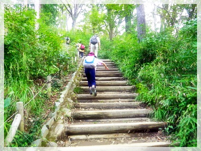 IMGP3434登山