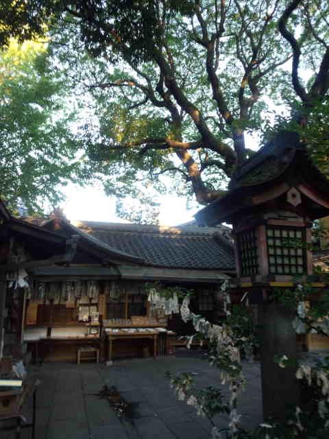 若一神社 (1)