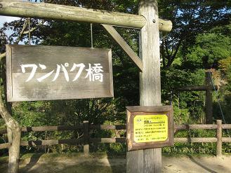 038_20121010210143.jpg