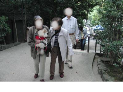 snap_ladysuzu_201296101649.jpg