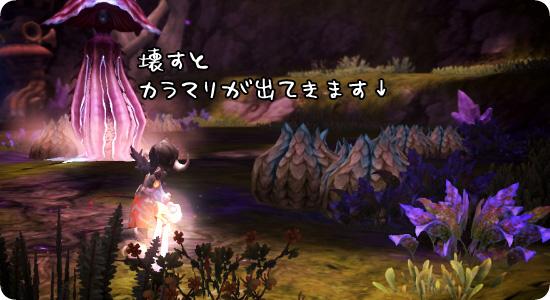20121116_03.jpg
