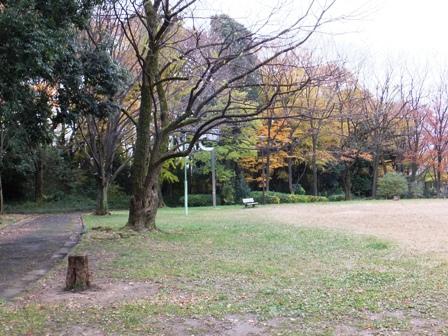 12cyarlypark1F2094.jpg