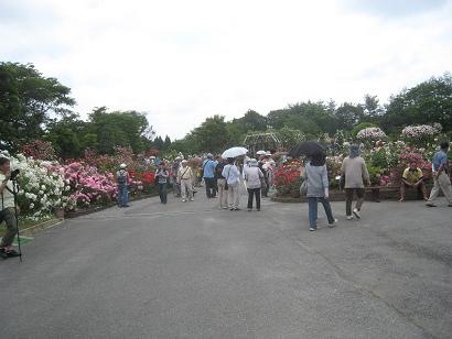 6/湧永満之記念庭園