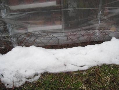 12/15 残ってた雪