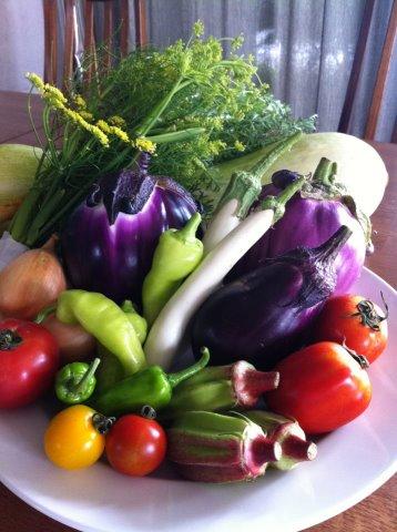 本日届いた有機野菜です(#^.^#)