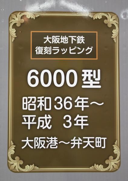 AM9P0000611_1.jpg