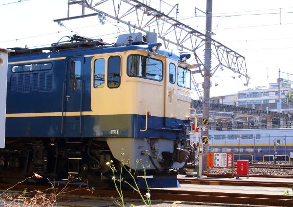 AM9P4830_1.jpg