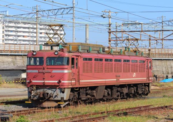 AM9P4868_1.jpg
