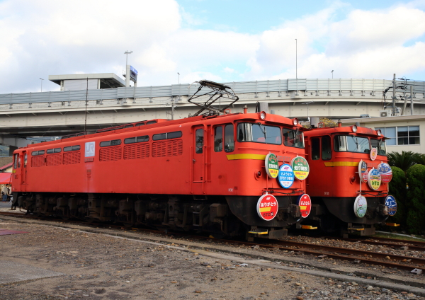 AM9P657_1.jpg