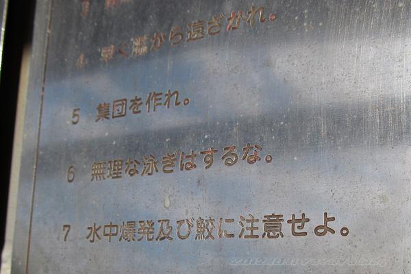 20121011_090.jpg