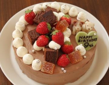 杏ちゃん9歳バースデーチョコケーキ