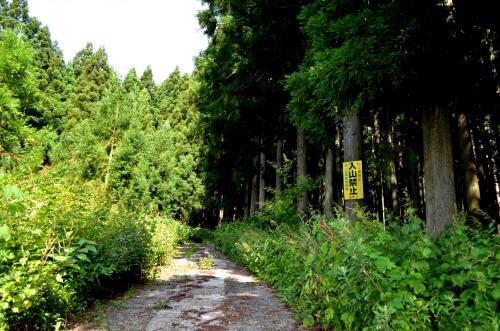 08172013fukusima-tanada13.jpg