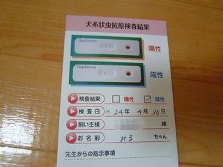 2012050609.jpg