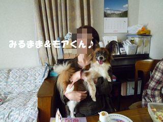 2012061224.jpg