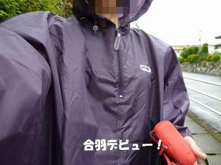 2012061709.jpg