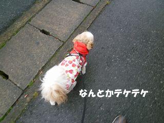 2012061710.jpg