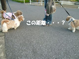 2012070105.jpg