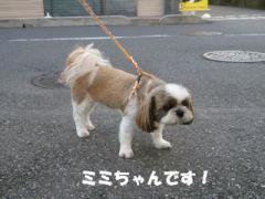 2012071707.jpg