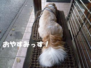 2012071710.jpg