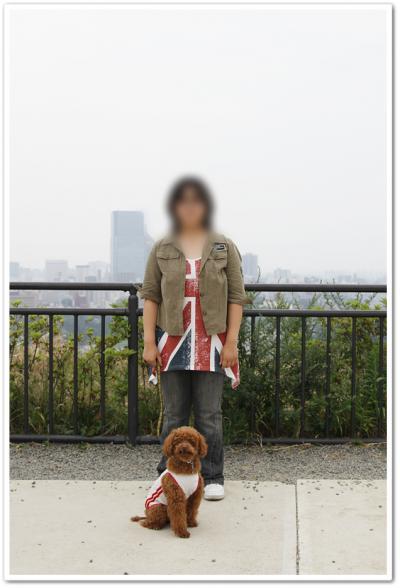 2012年8月11日№11