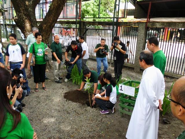 tree planting (16)