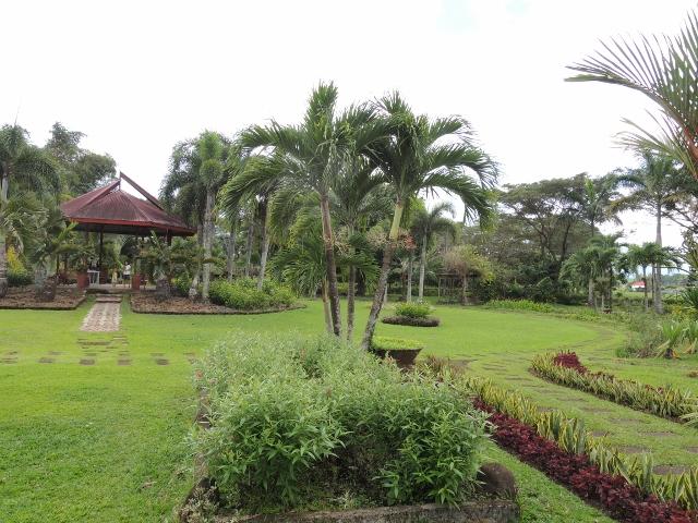 park (8)