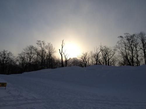 太陽がこっそり顔を出す