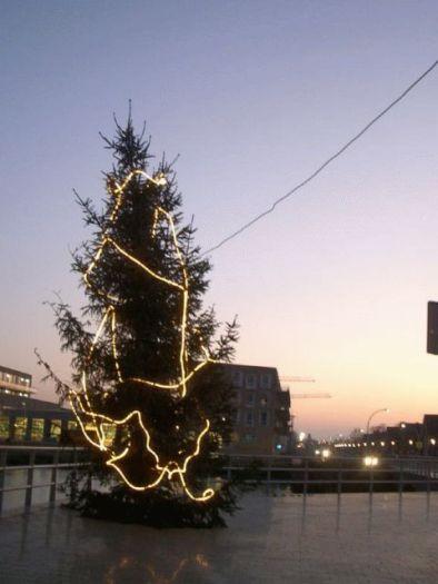 525_kerstboom.jpg