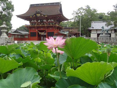 伊賀八幡宮1