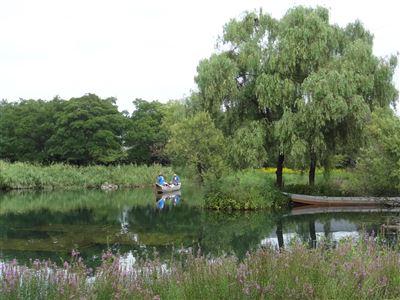 河川環境楽園 オアシスパーク6