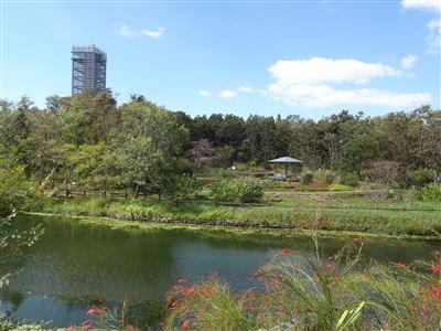 浜名湖ガーデンパーク4