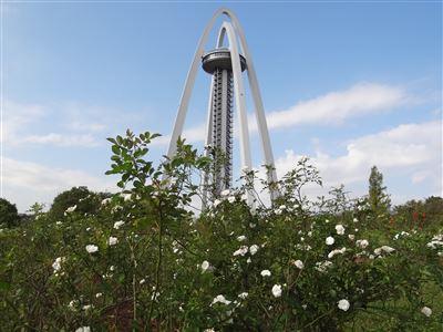 木曽三川公園 138タワーパーク4