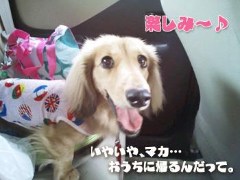 2012-07-01e_photo.jpg
