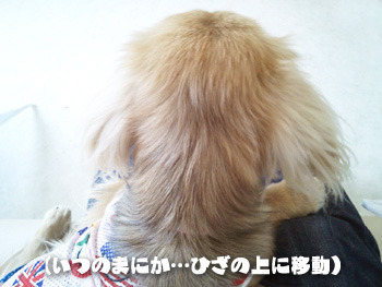 2012-07-01f_photo.jpg
