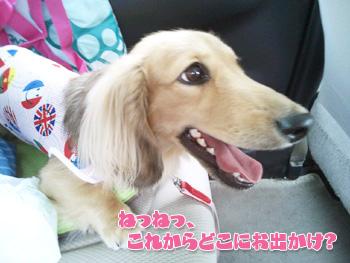 2012-07-01i_photo.jpg