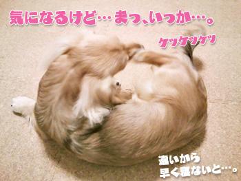 NCM_0099.jpg