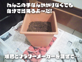NCM_0497.jpg
