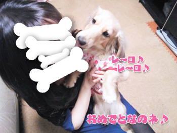 NCM_0566.jpg