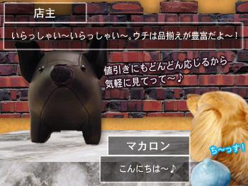 machi_buta01.jpg